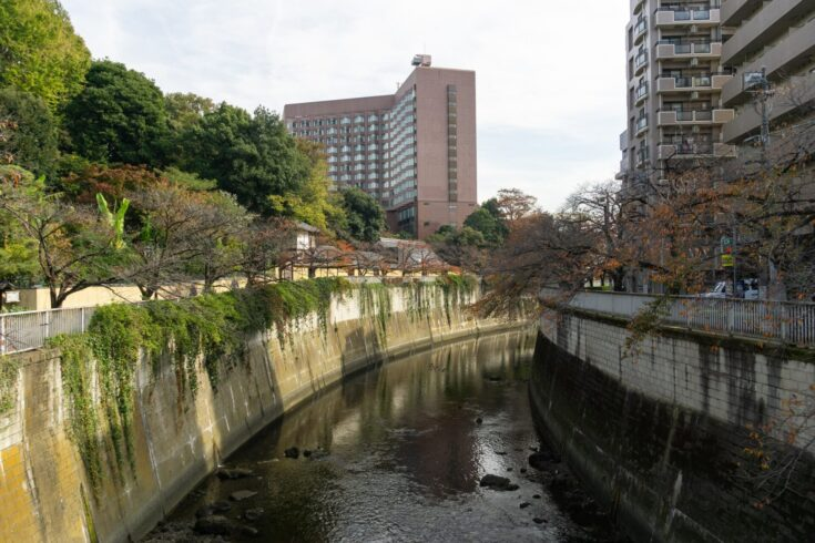 江戸川橋駅周辺の賃貸について